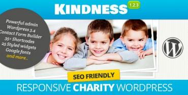 Kindness v1.3 – Premium WordPress Theme